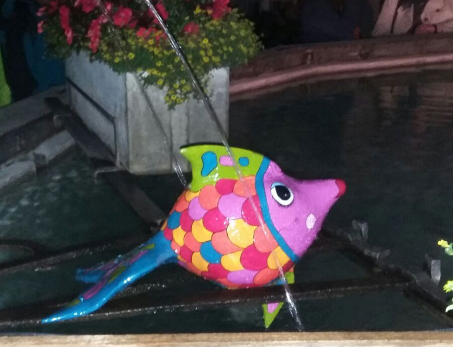 Fischomat_7