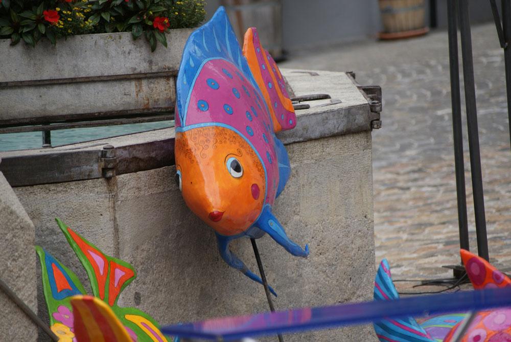 Fischomat_Aufbau_2